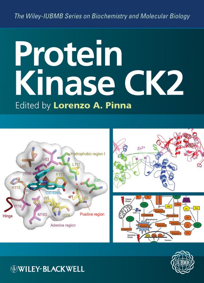 Protein Kinase CK2