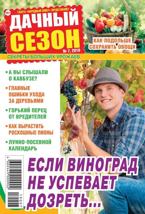Обложка «Дачный Сезон – Советы Читателей 07-2019»