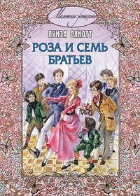 Обложка «Роза и семь братьев»