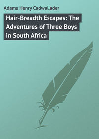 Обложка «Hair-Breadth Escapes: The Adventures of Three Boys in South Africa»