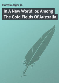 Обложка «In A New World: or, Among The Gold Fields Of Australia»