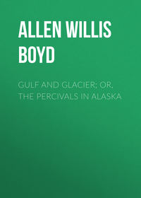 Обложка «Gulf and Glacier; or, The Percivals in Alaska»