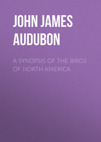 Обложка «A Synopsis of the Birds of North America»