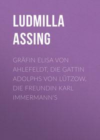 Обложка «Gräfin Elisa von Ahlefeldt, die Gattin Adolphs von Lützow, die Freundin Karl Immermann's»