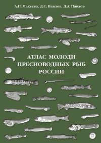 Обложка «Атлас молоди пресноводных рыб России»