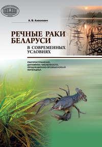 Обложка «Речные раки Беларуси в современных условиях»