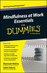 Обложка «Mindfulness At Work Essentials For Dummies»