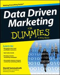 Обложка «Data Driven Marketing For Dummies»