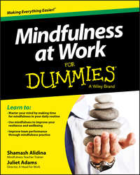 Обложка «Mindfulness at Work For Dummies»