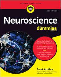 Обложка «Neuroscience For Dummies»