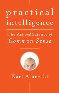 Обложка «Practical Intelligence. The Art and Science of Common Sense»