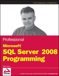 Обложка «Professional Microsoft SQL Server 2008 Programming»
