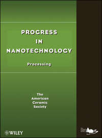 Обложка «Progress in Nanotechnology. Processing»
