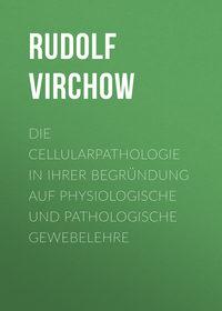 Обложка «Die Cellularpathologie in ihrer Begründung auf physiologische und pathologische Gewebelehre»