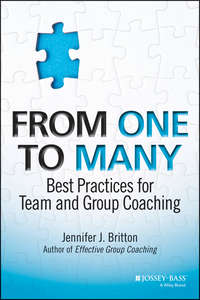 Обложка «From One to Many. Best Practices for Team and Group Coaching»
