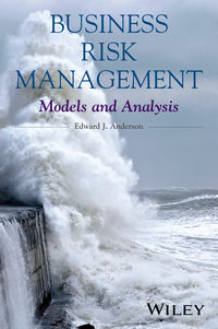 Обложка «Business Risk Management. Models and Analysis»