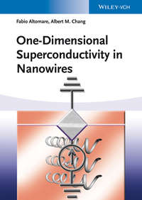 Обложка «One-Dimensional Superconductivity in Nanowires»