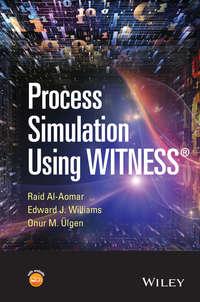 Обложка «Process Simulation Using WITNESS»