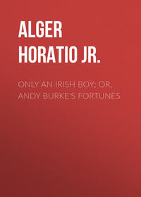 Обложка «Only an Irish Boy; Or, Andy Burke's Fortunes»