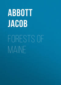Обложка «Forests of Maine»