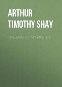 Обложка «The Son of My Friend»