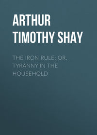 Обложка «The Iron Rule; Or, Tyranny in the Household»