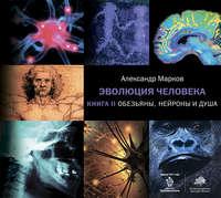 Обложка «Обезьяны, нейроны и душа»
