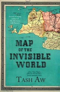 Обложка «Map of the Invisible World»