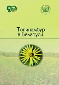 Обложка «Топинамбур в Беларуси»