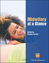 Обложка «Midwifery at a Glance»