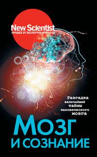Обложка «Мозг и сознание. Разгадка величайшей тайны человеческого мозга»