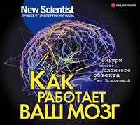 Обложка «Как работает ваш мозг»