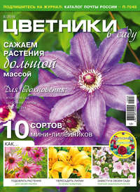 Обложка «Цветники в саду №08/2019»