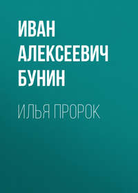 Обложка «Илья Пророк»