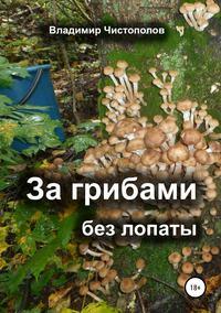Обложка «За грибами без лопаты»