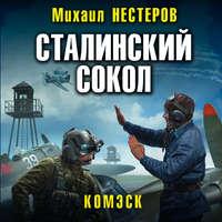 Обложка «Сталинский сокол. Комэск»