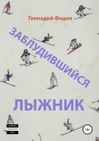 Обложка «Заблудившийся лыжник»