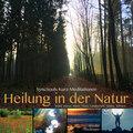 Heilung in der Natur - SyncSouls Kurzmeditationen: Wald, Wiese, Meer, Fluss, Landschaft, Sonne, Schnee