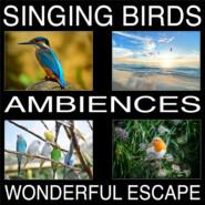 Singing Birds Ambiences, Wonderful Escape