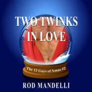 Two Twinks In Love - 12 Gays of Xmas, book 2 (Unabridged)