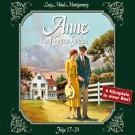 Anne auf Green Gables, Box 5: Folge 17-20