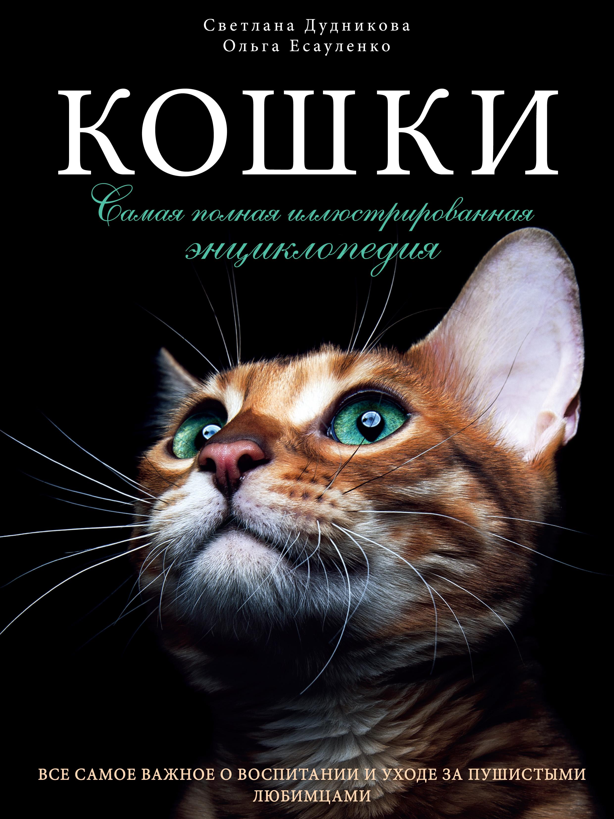 Книги с кошками список