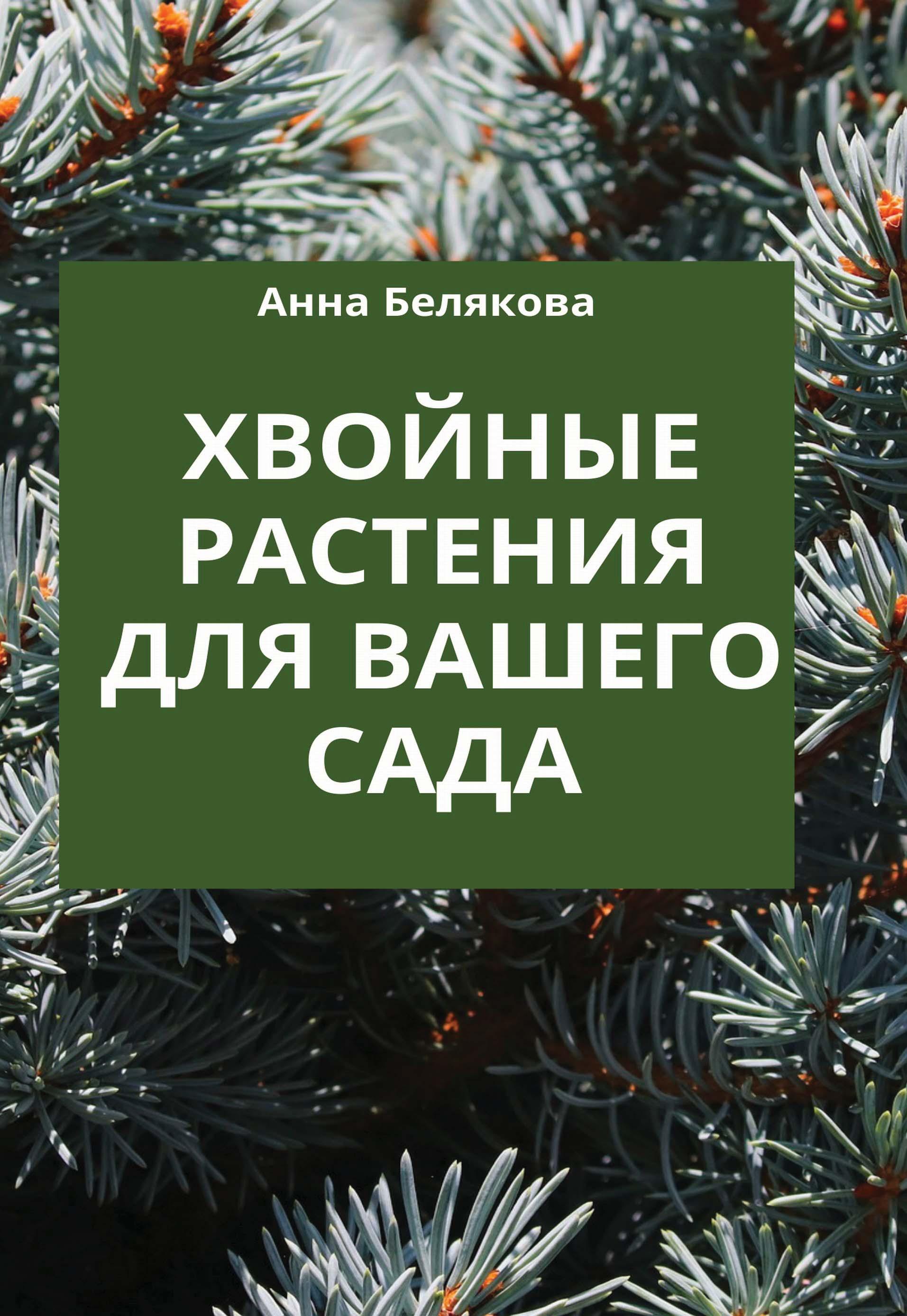 Ольга Городец Красивые хвойные для вашего сада михаил васильев самые красивые деревья и кустарники справочник садовода