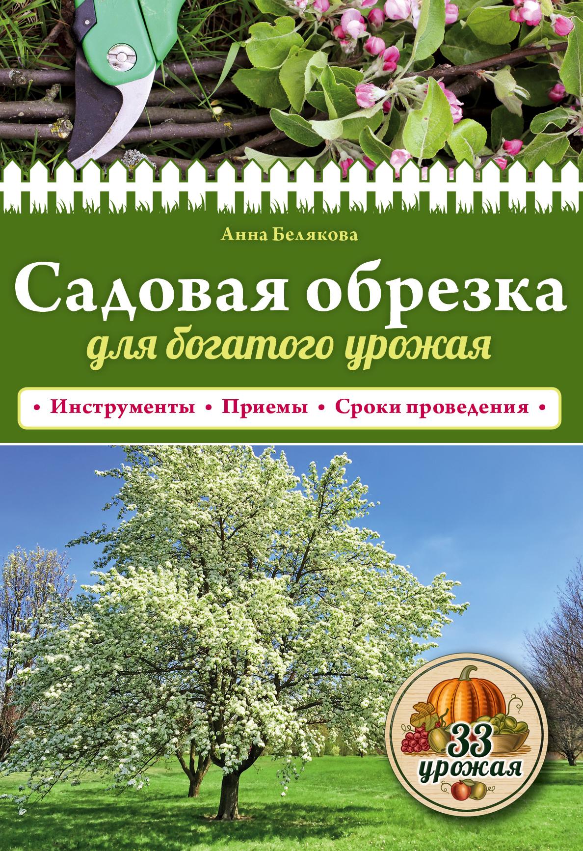 Фото - Анна Белякова Садовая обрезка для богатого урожая курдюмов н и деликатная обрезка почти без секатора