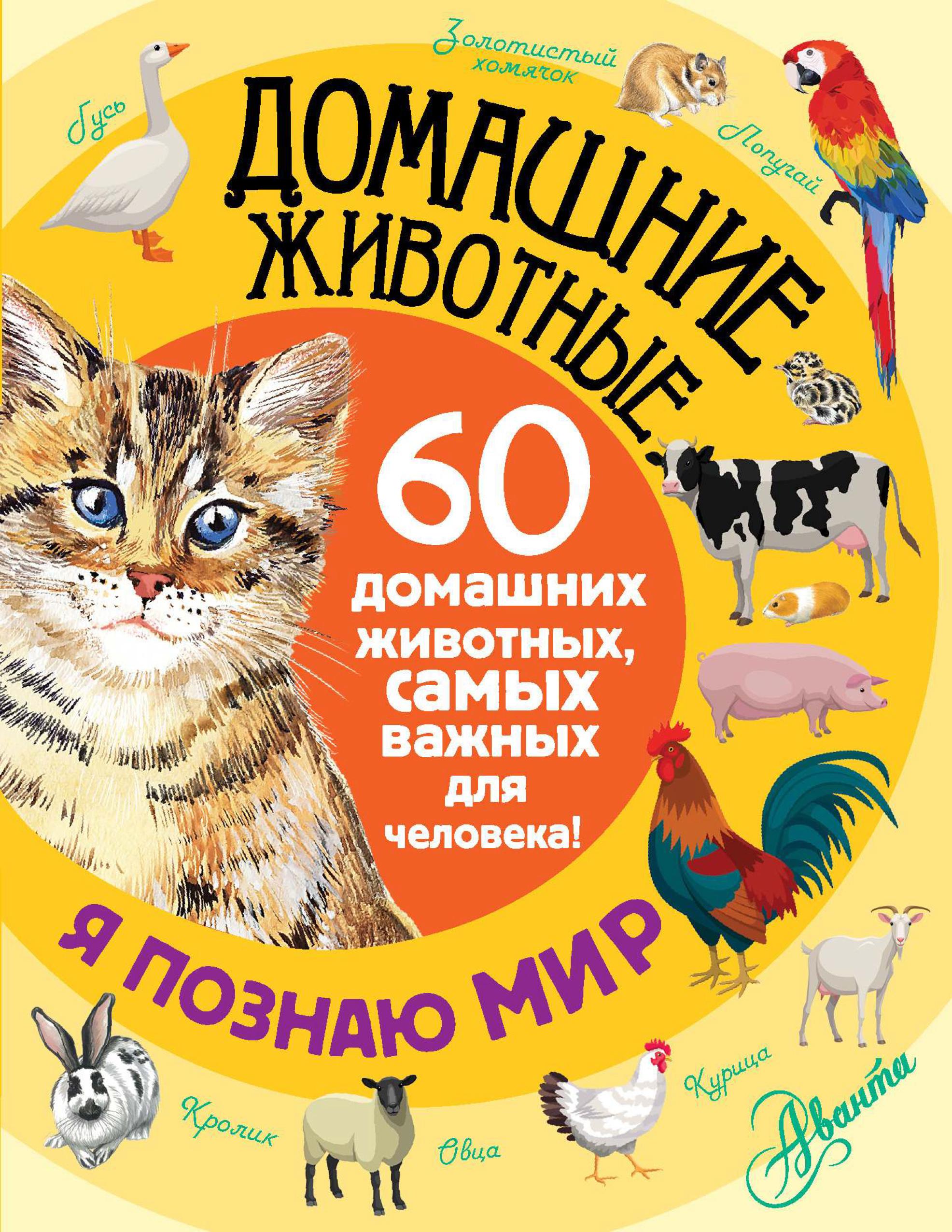 Е. Ю. Снегирева Домашние животные. 60 домашних животных, самых важных для человека! е ю снегирёва домашние животные 60 домашних животных самых важных для человека