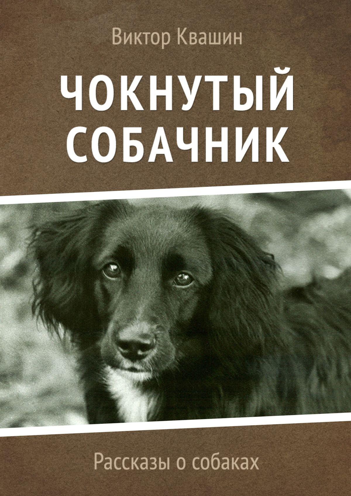 цены на Виктор Квашин Чокнутый собачник. Рассказы о собаках  в интернет-магазинах