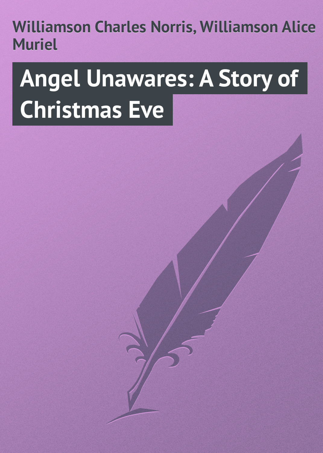 Williamson Charles Norris Angel Unawares: A Story of Christmas Eve пальто alix story alix story mp002xw13vur