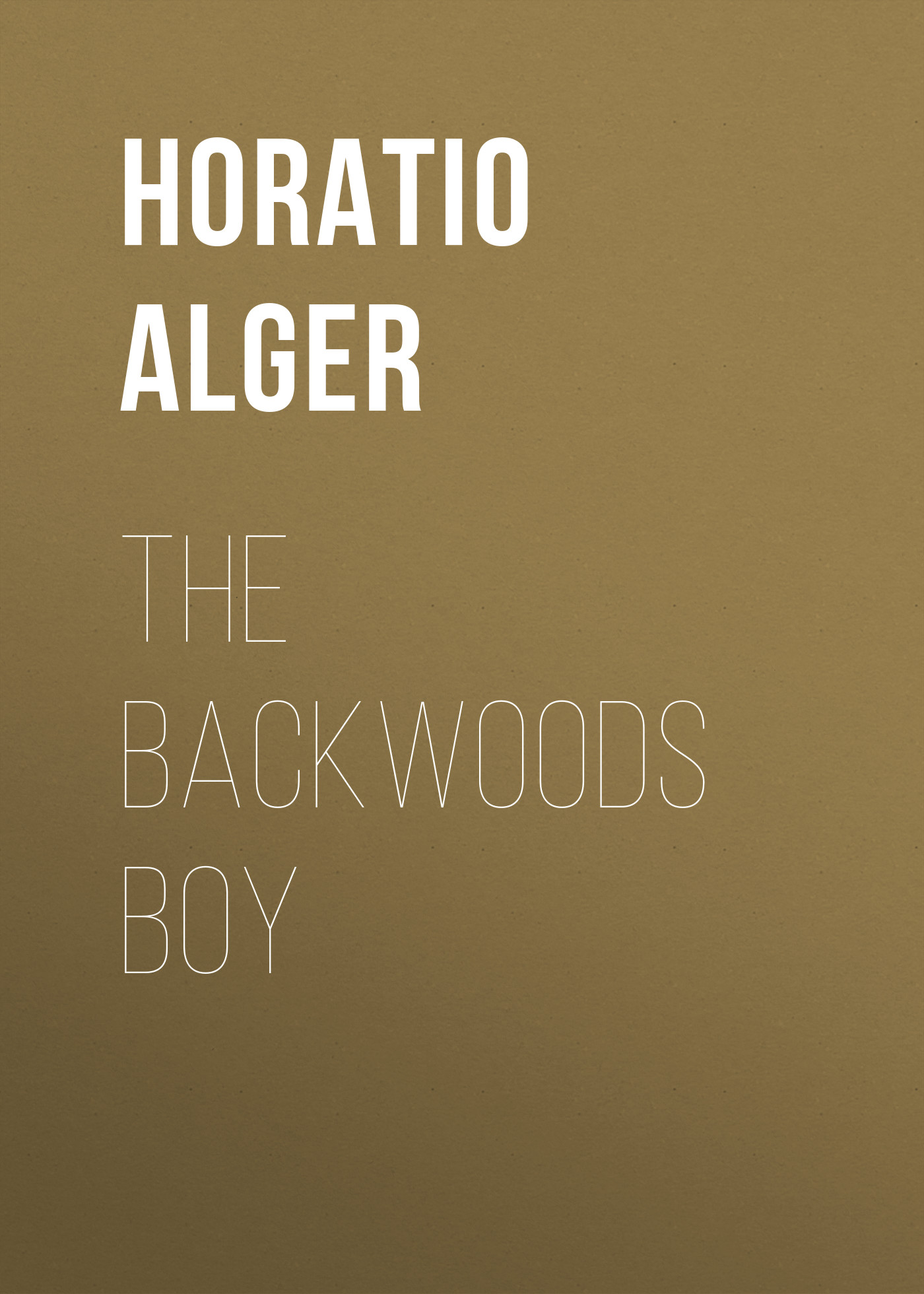 Alger Horatio Jr. The Backwoods Boy alger horatio jr the store boy