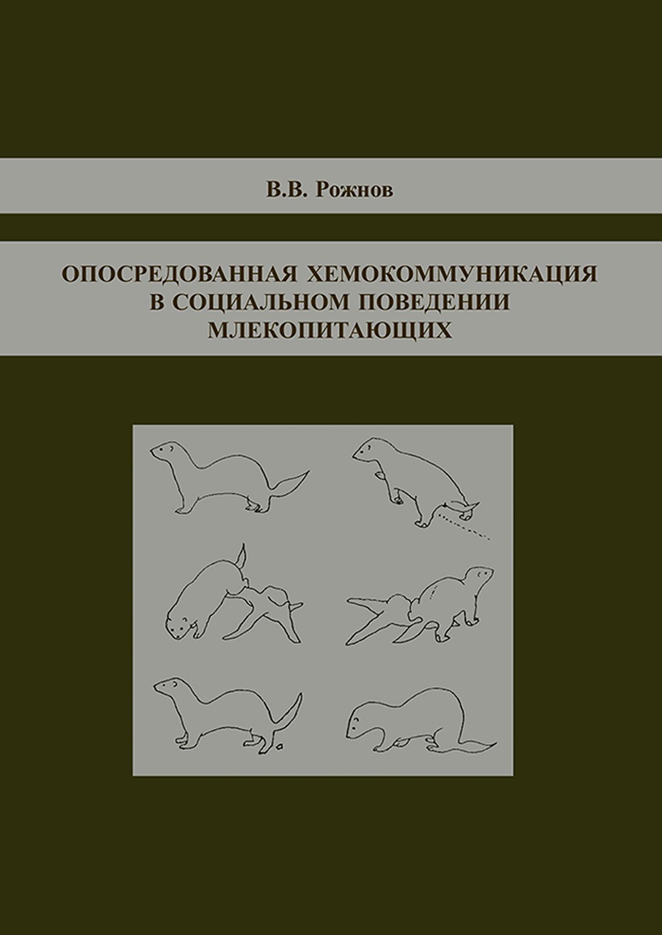 В. В. Рожнов Опосредованная хемокоммуникация в социальном поведении млекопитающих в с громов эволюция социальности у млекопитающих