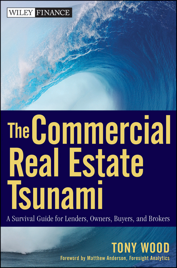 Tony Wood The Commercial Real Estate Tsunami. A Survival Guide for Lenders, Owners, Buyers, and Brokers tsunami